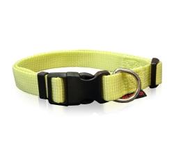 dog collars