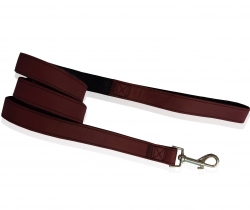 stylish leash