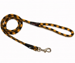 stylish leash